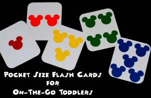 pocket sized flash cards