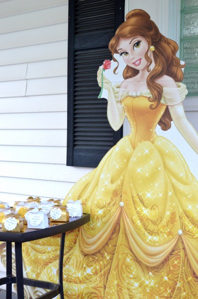 Belle Birthday Party